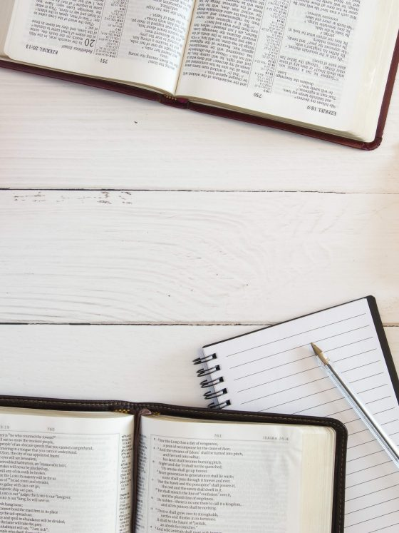 How to Read the Bible - A Beginner's Guide | The Grace and Moxie Life